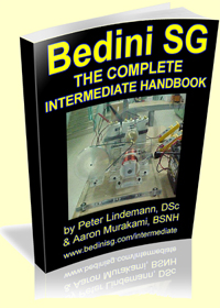 Bedini SG - The Complete Intermediate Guide