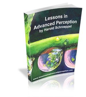 Lessons In Advanced Perception